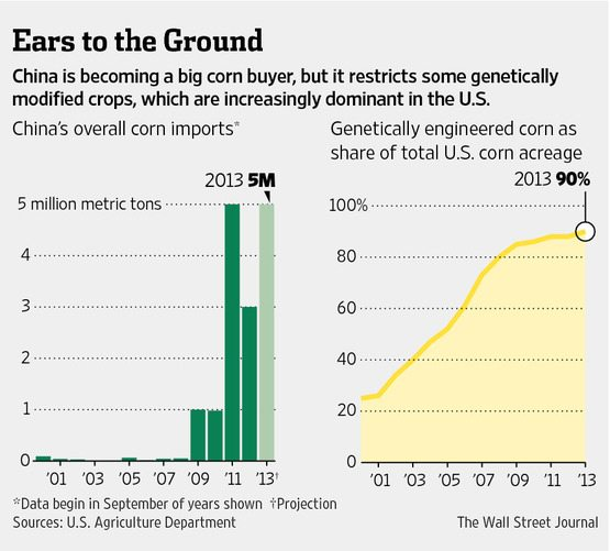 US corn exports to China