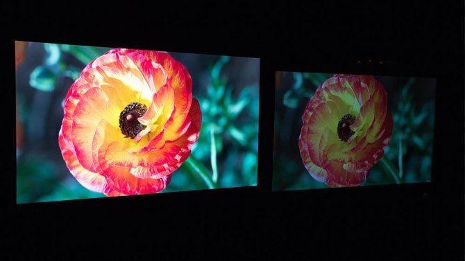 Dolby vision monitors