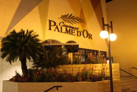 Palme D'Or to shut.