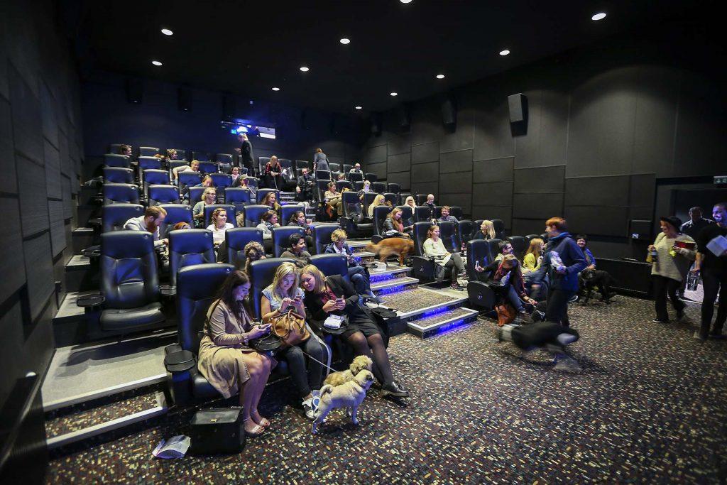 Dog Cinema at Ringen Kino in Oslo. (photo: Aftenposten / Borgen / Orn)