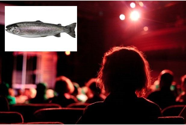 Something fishy in Grimsby cinemas. (photo: Grimsby Telegraph)