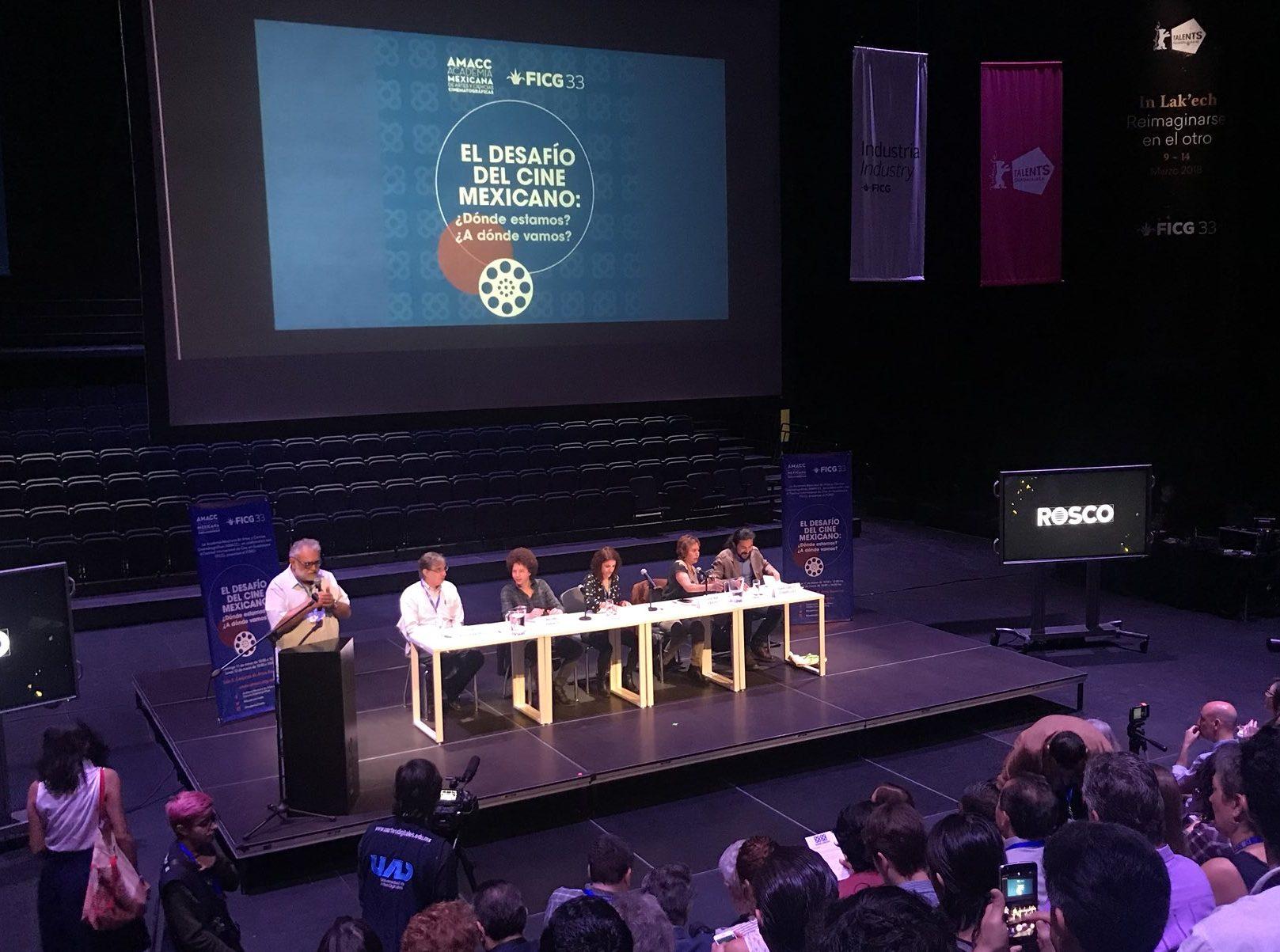 AMACC panel discussion at the Guadalajara International Film Festival