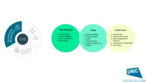 Environmental Social Governance (ESG) (credit: UNIC)